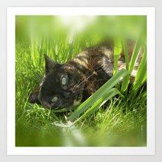 wild cat III Art Print