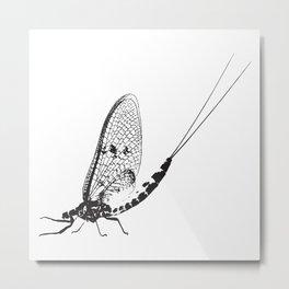 Ephemera Metal Print