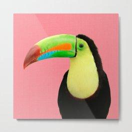 Toucan Bird - Pink Metal Print