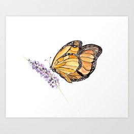 Monarch Butterfly Watercolor Art, Orange Butterfly Painting, Purple Flower Art Print