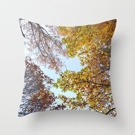 """""""Up in the air II"""". Autumn colors Throw Pillow"""