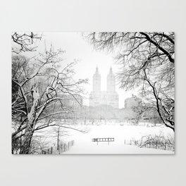 Winter - Central Park - New York City Canvas Print