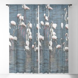 Flamingo Birds In Pink and White On Blue Sheer Curtain