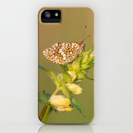 Knapweed Fritillary iPhone Case