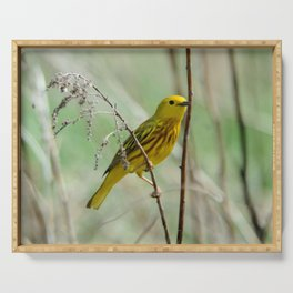 Yellow Warbler Serving Tray