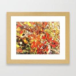 Forest Collage Framed Art Print