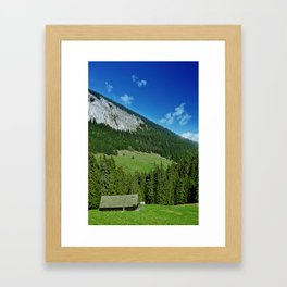 lone house Framed Art Print