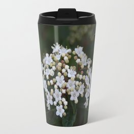 Viburnum tinus flowers and buds Travel Mug