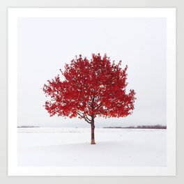 The Red Tree Art Print