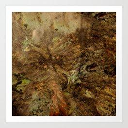 Dehiscence 1 Art Print