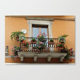 Window 1 Canvas Print