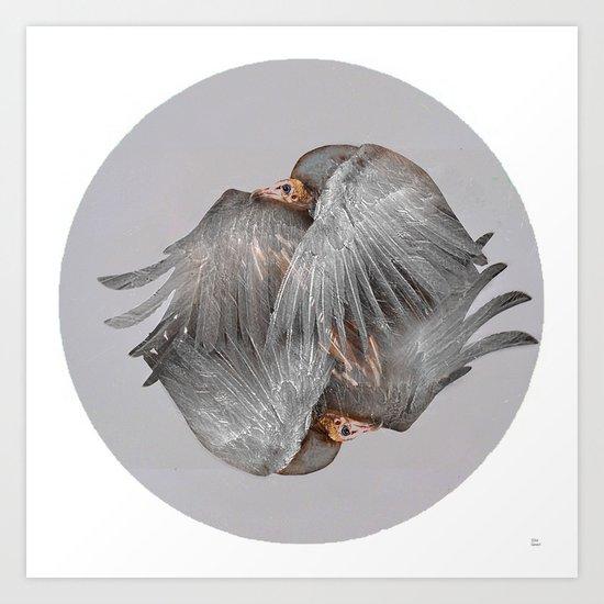 The vulture Art Print