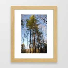 Dance With Nature Framed Art Print