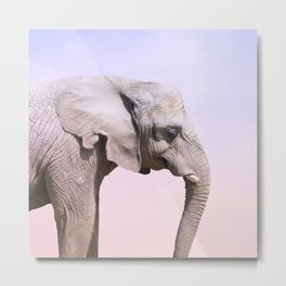 Elephant and Sunset Photography Metal Print