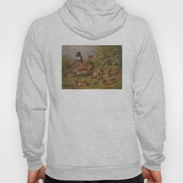 Vintage Quails & Their Chicks Illustration (1867) Hoody