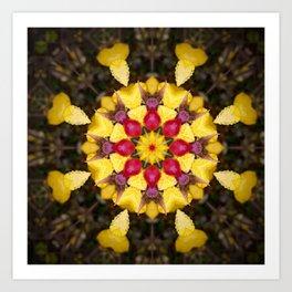 Rose Hip Autumn Art Print