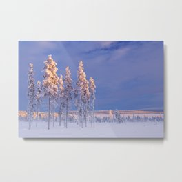 I - Snowy landscape in Finnish Lapland in winter at sunset Metal Print