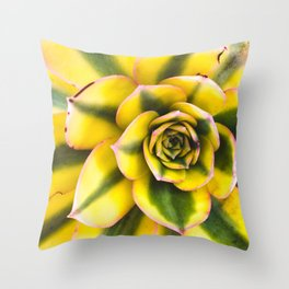 Plant member of the Cactus Throw Pillow