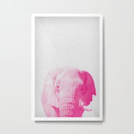 Elephant 02 Metal Print