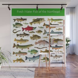 Illustrated Northeast Game Fish Identification Chart Wall Mural