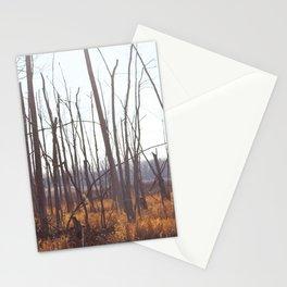 Novembre 7 Stationery Cards