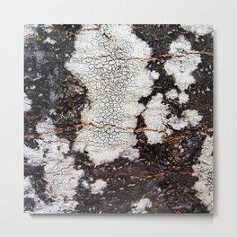 Tree bark naural pattern 2 Metal Print