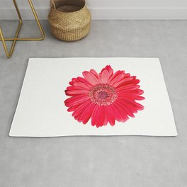 isolated red gerbera daisy on white Rug