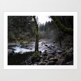 Water rushing down Butte Creek Art Print