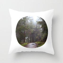 Ryde Throw Pillow