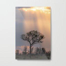 Stormy Sunshine Metal Print