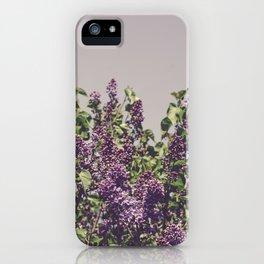 Wild Lilacs iPhone Case