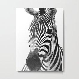 Black and white zebra illustration Metal Print