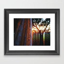 RAINBOW LIGHTS Framed Art Print