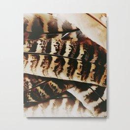 Feathered Metal Print