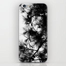 Mediterranean black and white pine tree iPhone Skin