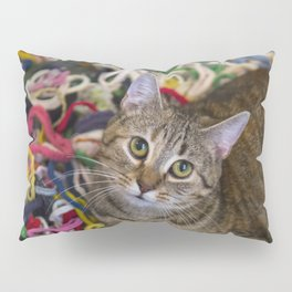 Kitten In Colorful Looms Pillow Sham