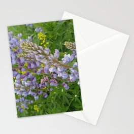 Lupine Field Stationery Cards