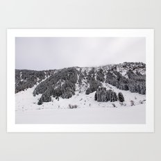 White Winterscapes III Art Print