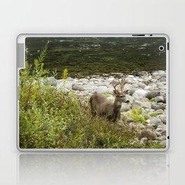 Handsome Deer on an Island No. 1 Laptop & iPad Skin