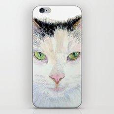 Sierra the Cat iPhone & iPod Skin