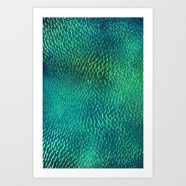 FluO scales Art Print