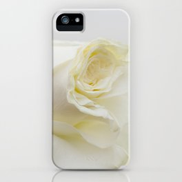 White Rose with Unfolding Petals Photograph iPhone Case