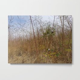 Snails in Grass Metal Print
