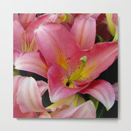 French Rose-Pink Star Lily Elegant Close-Up Metal Print