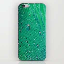 Emerald Feather iPhone Skin