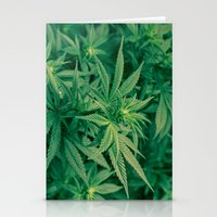 marijuana Stationery Cards featuring Marijuana Plants  by Limitless Design