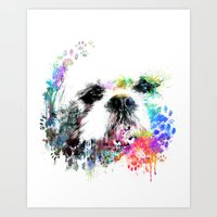 shih tzu Art Prints featuring Shih TZU  by PhotosbySN