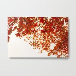 Skies Above (III) Metal Print