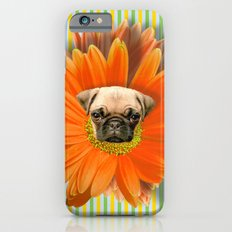 Pistil Pug iPhone 6s Slim Case
