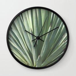 Agave Silvestre Wall Clock